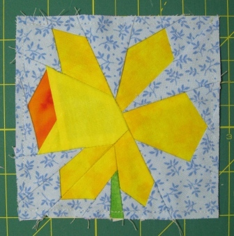Large daffodil flower complete